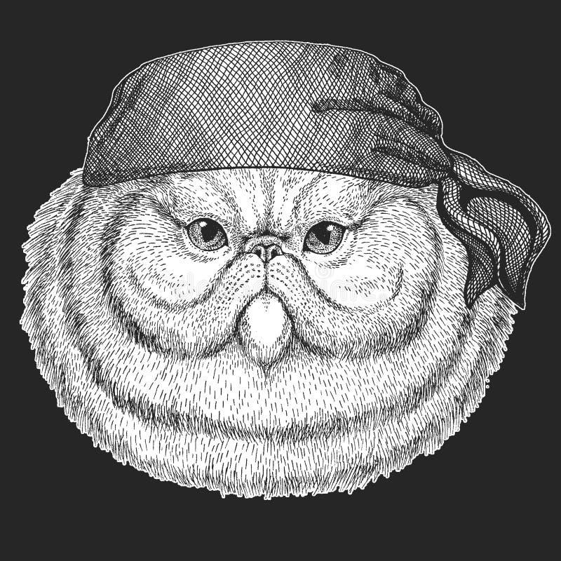 Porträt des flaumigen kühlen Piraten der persischen Katze, Matrose, seawolf, Seemann, Radfahrertier für Tätowierung, T-Shirt, Emb stock abbildung
