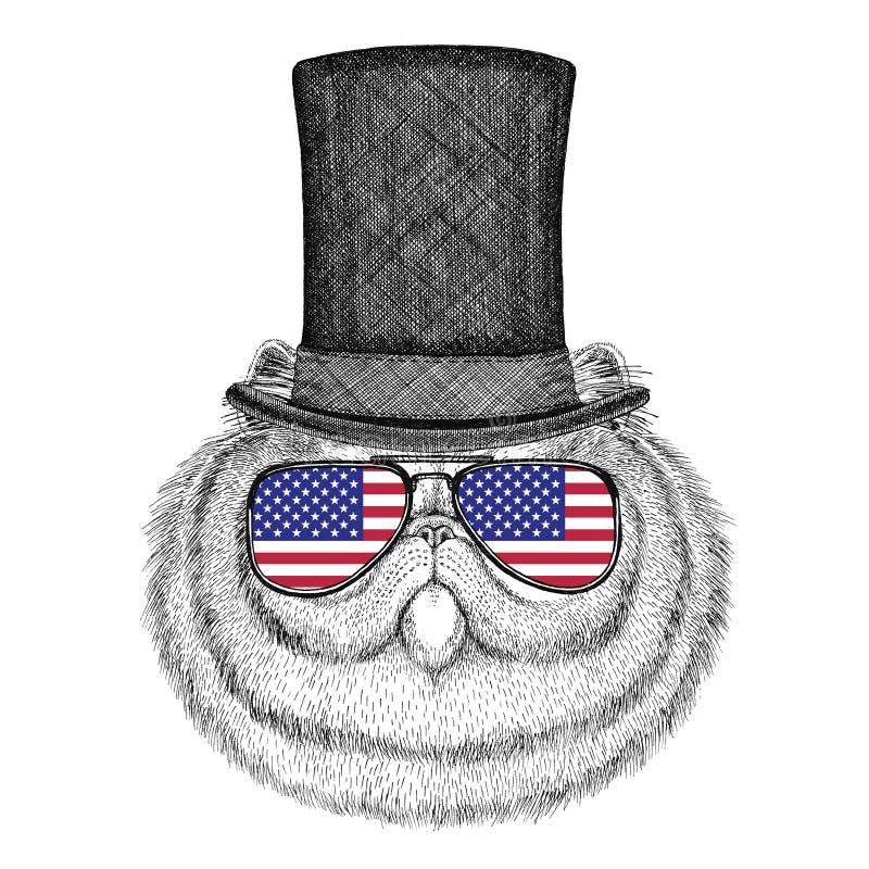Porträt des flaumigen tragenden Zylinderzylinders der persischen Katze und Gläser mit USA kennzeichnen Flagge Staaten von Amerika stock abbildung