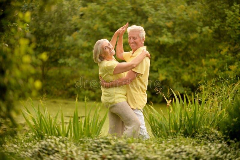 Porträt des glücklichen älteren Paartanzens und -aufstellung im Sommerpark lizenzfreie stockbilder