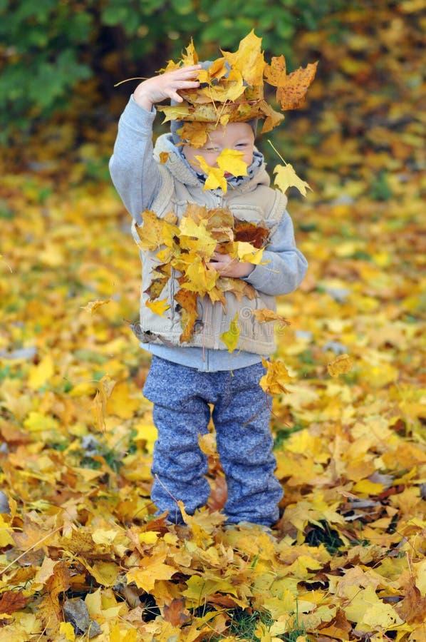 Porträt des glücklichen kleinen Jungen, der mit gelben Herbstblättern spielt stockbild