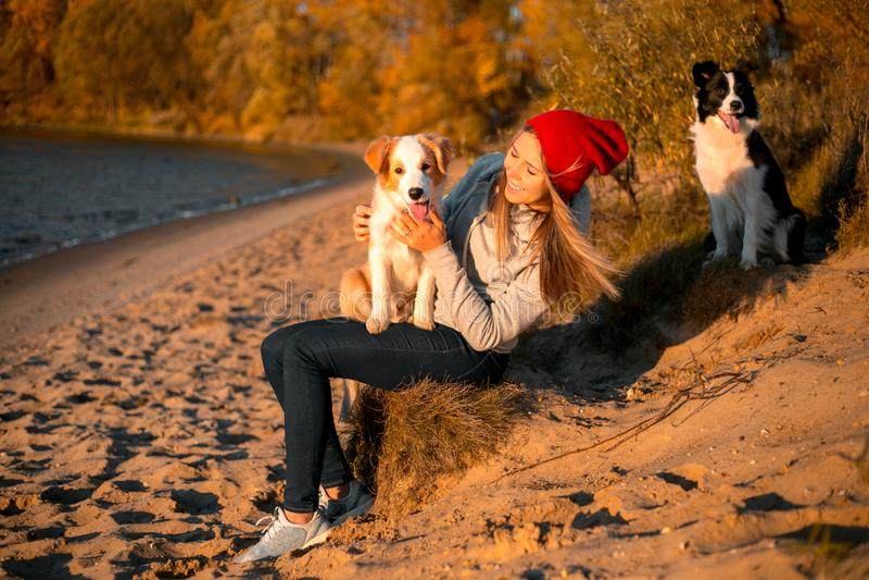 Porträt des glücklichen Mädchens mit zwei dem lustigen border collie Hund auf Strand an der Küste gelber Wald des Herbstes auf Hi stockbilder