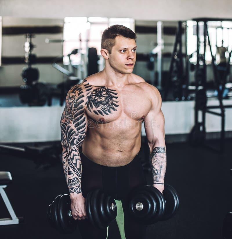 Porträt des hübschen männlichen Bodybuilders mit Dummköpfen lizenzfreies stockbild
