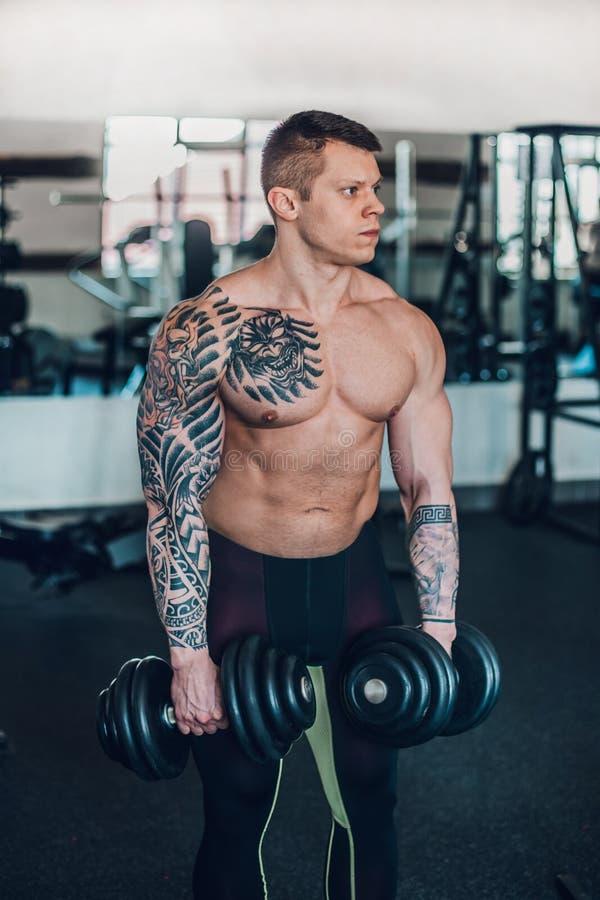 Porträt des hübschen männlichen Bodybuilders mit Dummköpfen lizenzfreie stockfotografie
