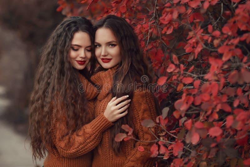 Porträt des Herbstes mit zwei Frauen im Freien Junger schöner Brunettezwilling lizenzfreies stockfoto