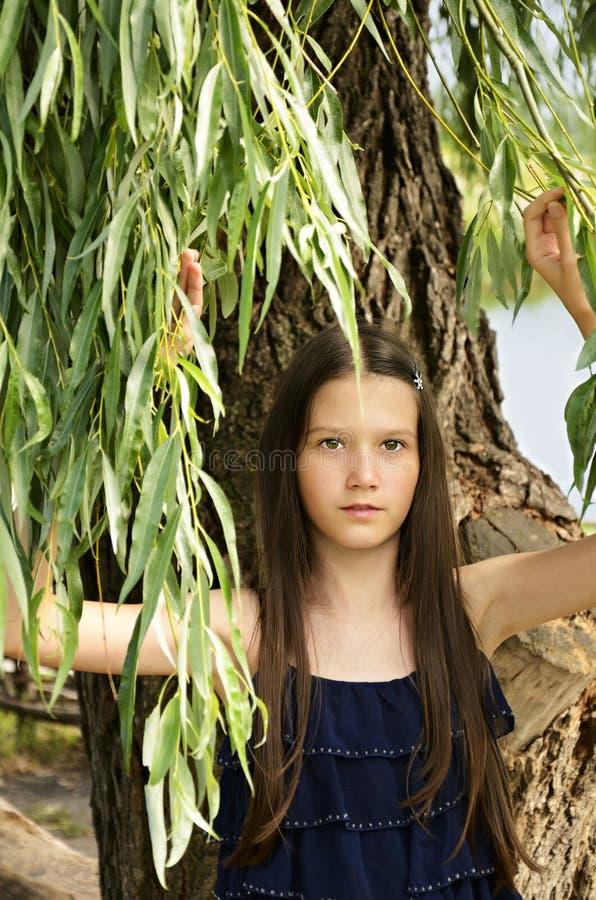 Porträt des jugendlich Mädchens stehend unter den Niederlassungen der Espe und des m stockfotos
