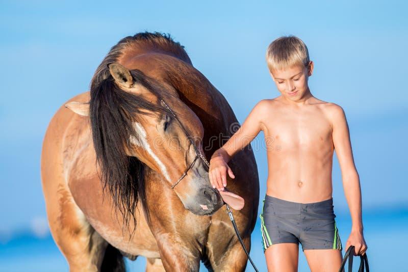 Porträt des jungen Reiters mit Pferd im Sonnenuntergang stockfoto