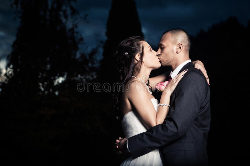 Porträt des jungen verheirateten Paars stockbild