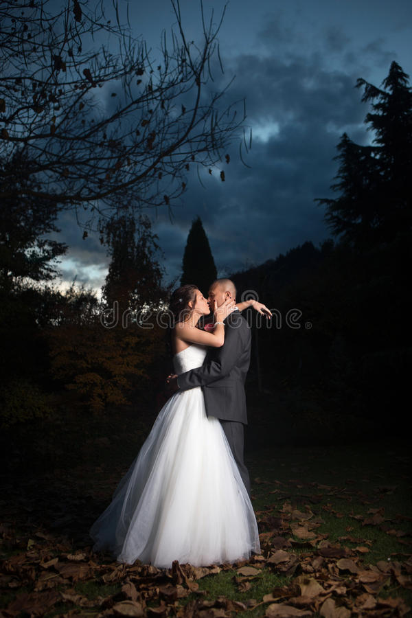 Porträt des jungen verheirateten Paars stockfotos