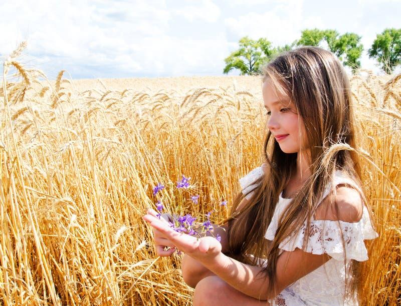 Porträt des lächelnden netten Kindes des kleinen Mädchens auf dem Feld des Weizens Blumen halten lizenzfreie stockfotos