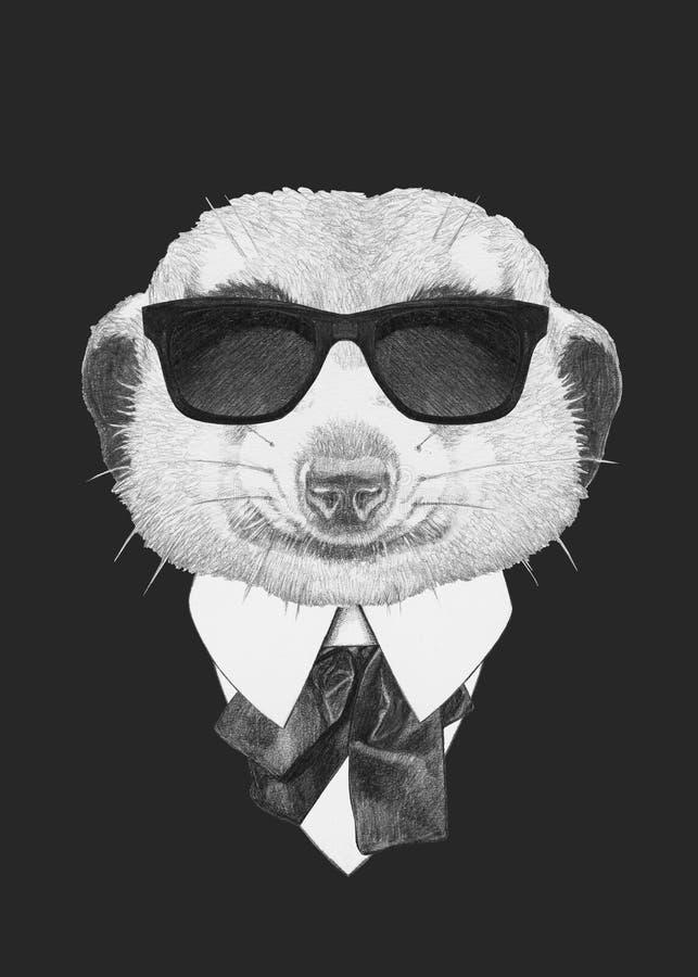 Porträt des Mungos in der Klage lizenzfreie abbildung