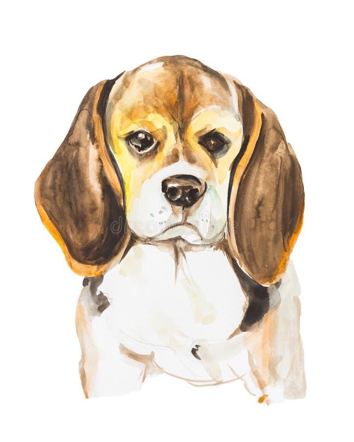 Porträt des netten traurigen Hundes lokalisiert auf weißem Hintergrund Von Hand gezeichnete Illustration des Aquarells lizenzfreie stockfotos