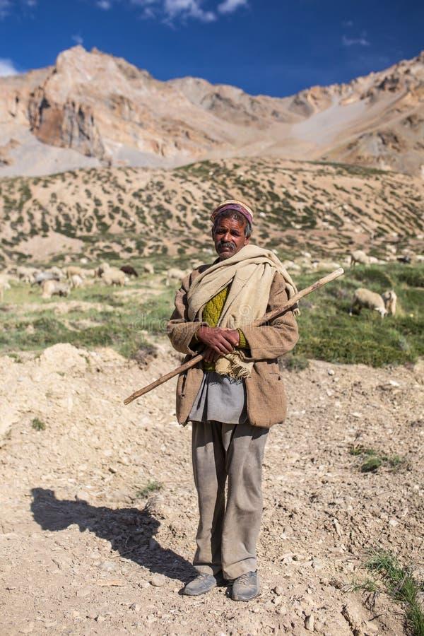 Porträt des nicht identifizierten indischen Schäfers mit seinen Schafen nahe Sarchu-Lager in Ladakh, Nord-Indien lizenzfreie stockfotos