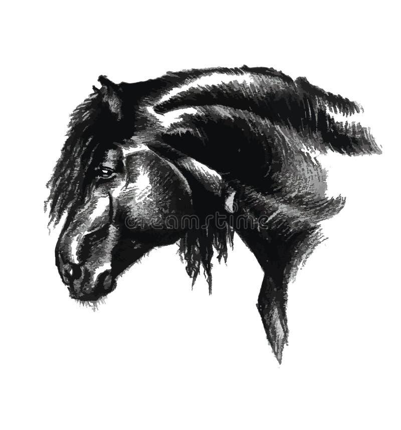Porträt des Pferds in der Schwarzweiss-Kunstzeichnung stock abbildung