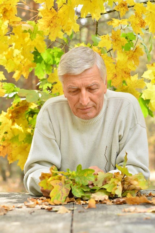 Porträt des reifen durchdachten Mannes, der bei Tisch draußen über Herbsthintergrund sitzt lizenzfreie stockfotos