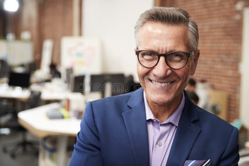 Porträt des reifen Geschäftsmann-In Modern Open-Plan-Büros mit Geschäft Team Working In Background lizenzfreie stockfotografie