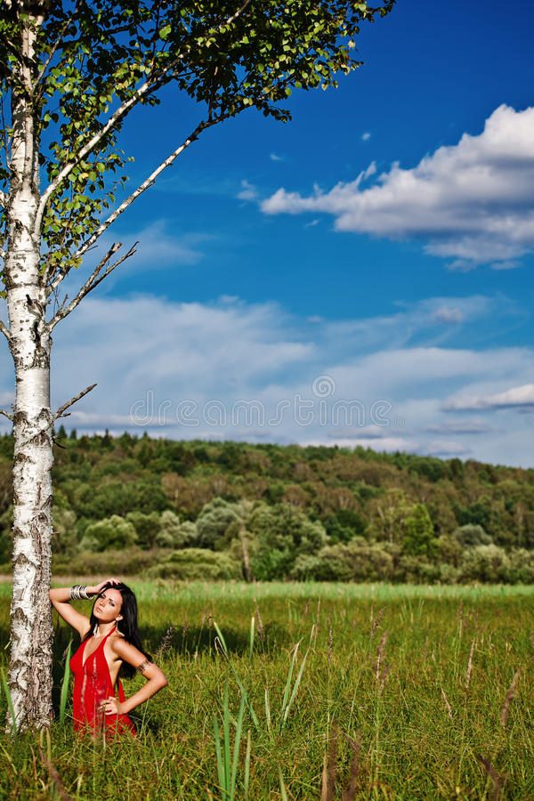 Porträt des roten hellen Kleides der jungen schönen Brunettefrau stockfotos