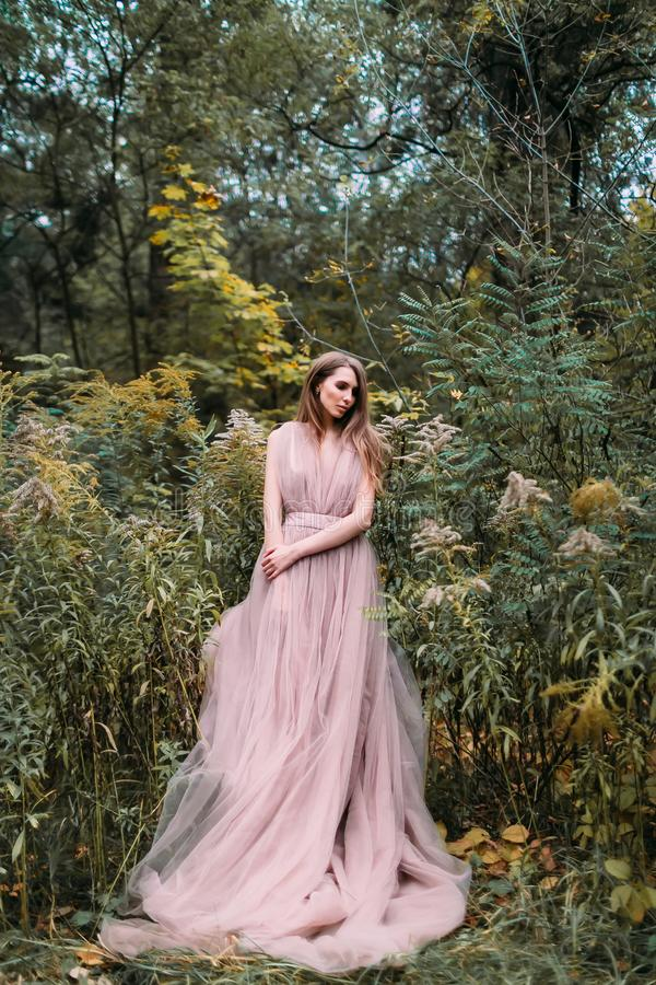 Porträt des schönen kaukasischen Mädchens mit langem rosa Kleid in den grünen Blättern Weicher Fokus In voller Länge stockfoto