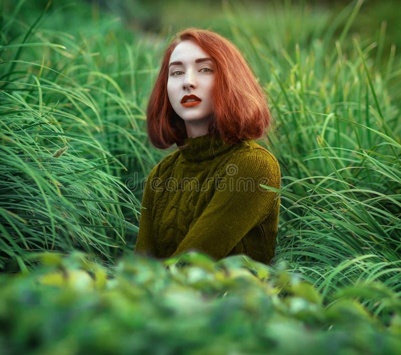 Porträt des schönen redhaired Mädchens im hohen Gras in einem warmen Schalter lizenzfreie stockbilder