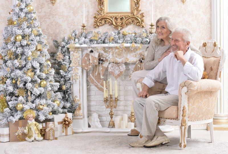 Porträt des Unterhaltens von den alten Paaren, die Weihnachten nahe Tannenbaum feiern stockfotos