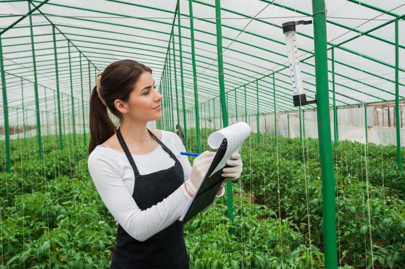 Porträt des weiblichen Ingenieurs der jungen Landwirtschaft, der im Gewächshaus arbeitet lizenzfreies stockbild