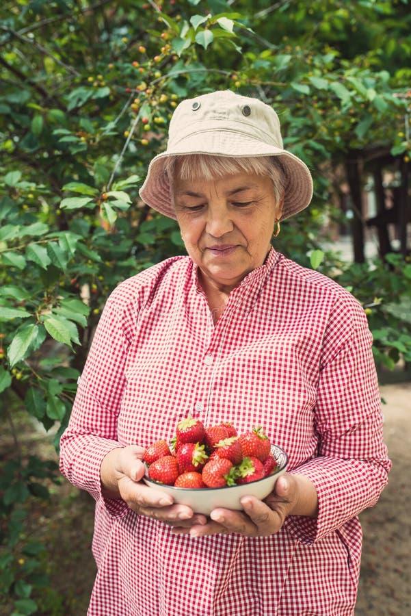 Porträt einer älteren Frau, die Erdbeeren einer Schüssel hält stockfoto