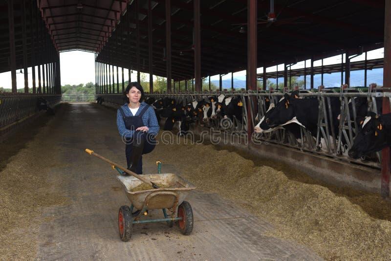 Porträt einer Bauernhoffrau lizenzfreie stockfotografie