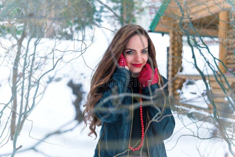 Porträt einer Frau im Winterwald stockfotos