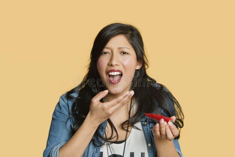 Porträt einer jungen Frau, die glühenden Paprikapfeffer über farbigem Hintergrund isst stockfoto