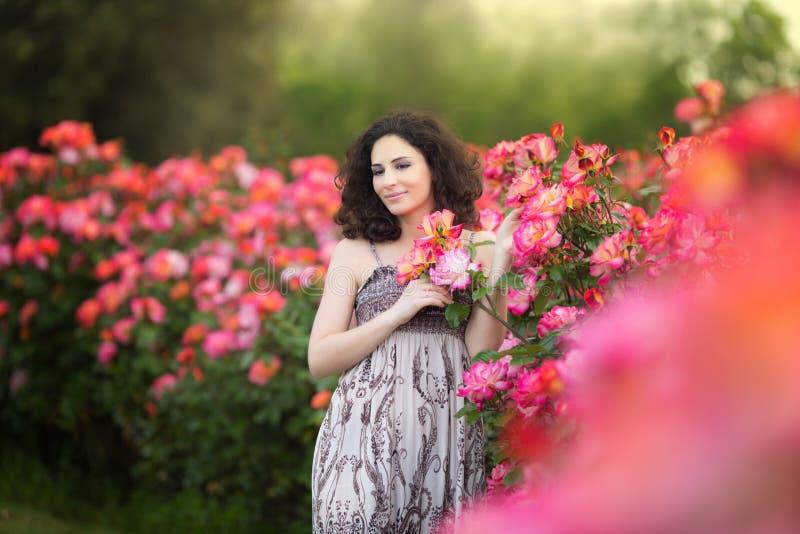 Porträt einer jungen Frau nahe rotem und rosa Rosenbusch, schauend nach links lizenzfreies stockbild