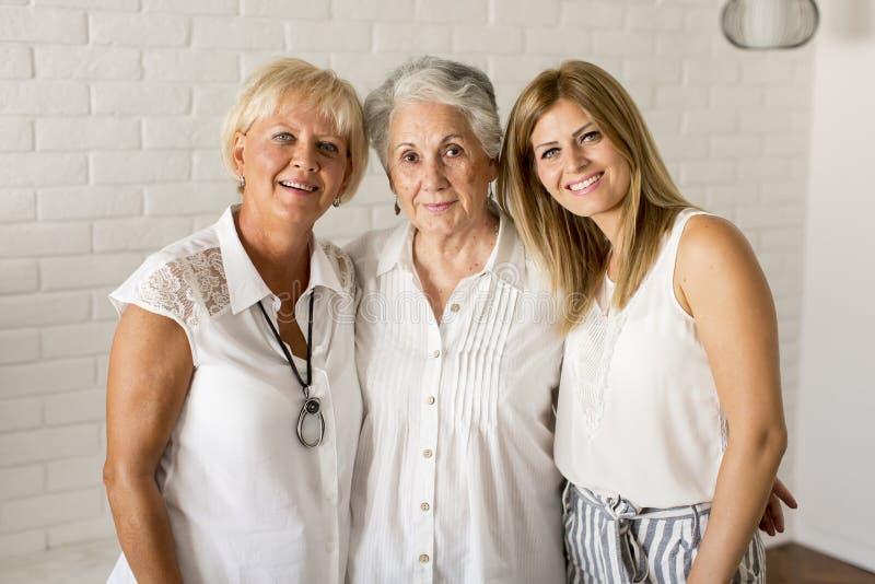 Porträt einer lächelnden Frau, der Großmutter und der Enkelin stockfotos