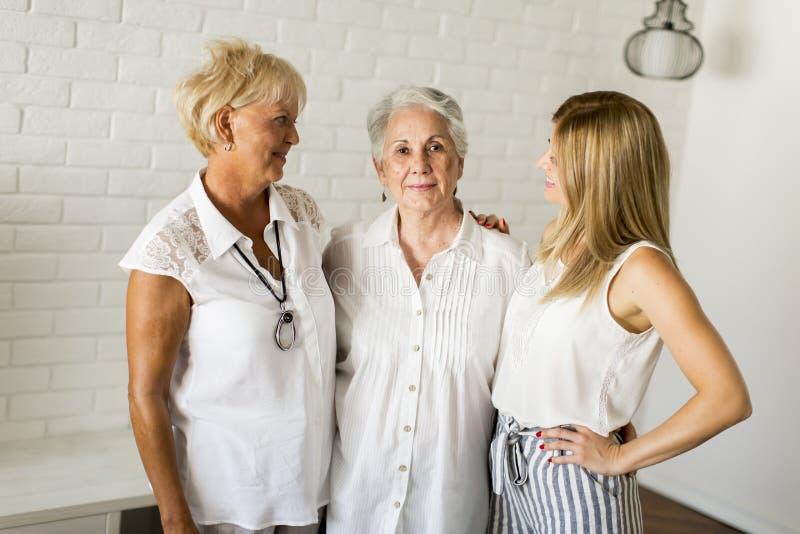 Porträt einer lächelnden Frau, der Großmutter und der Enkelin lizenzfreie stockbilder