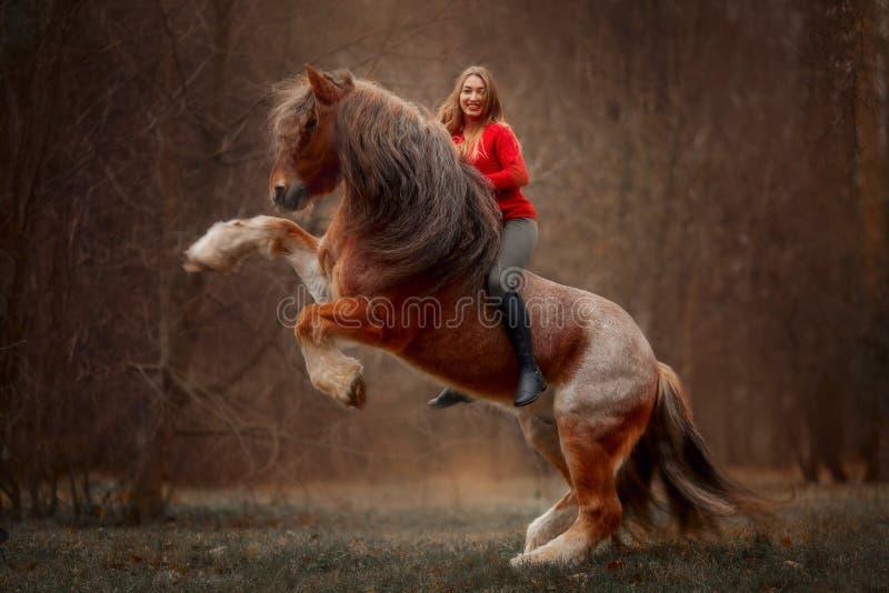 Porträt einer schönen jungen Frau mit Tinker Pferd lizenzfreie stockfotografie