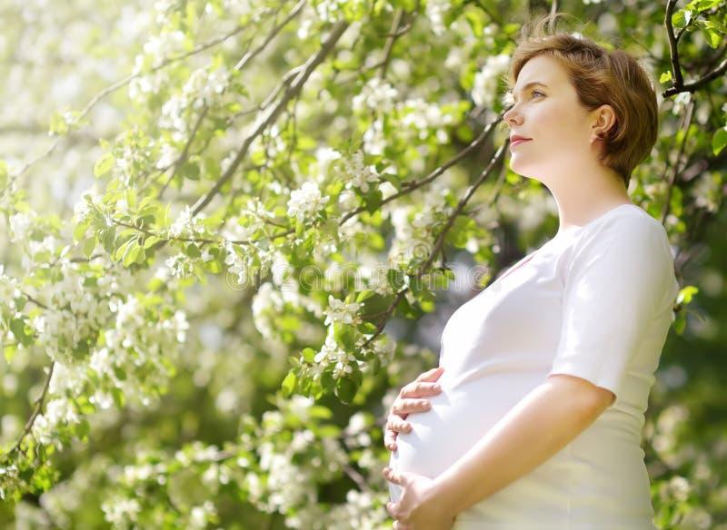 Porträt einer schönen schwangeren jungen Frau am Frühlingspark lizenzfreie stockfotografie
