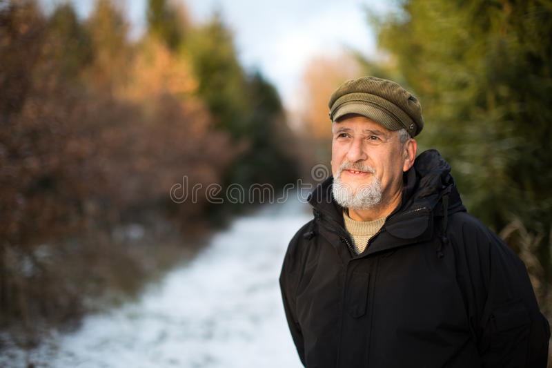 Porträt eines älteren Mannes, im Freien auf einem schneebedeckten Waldweg stockbild