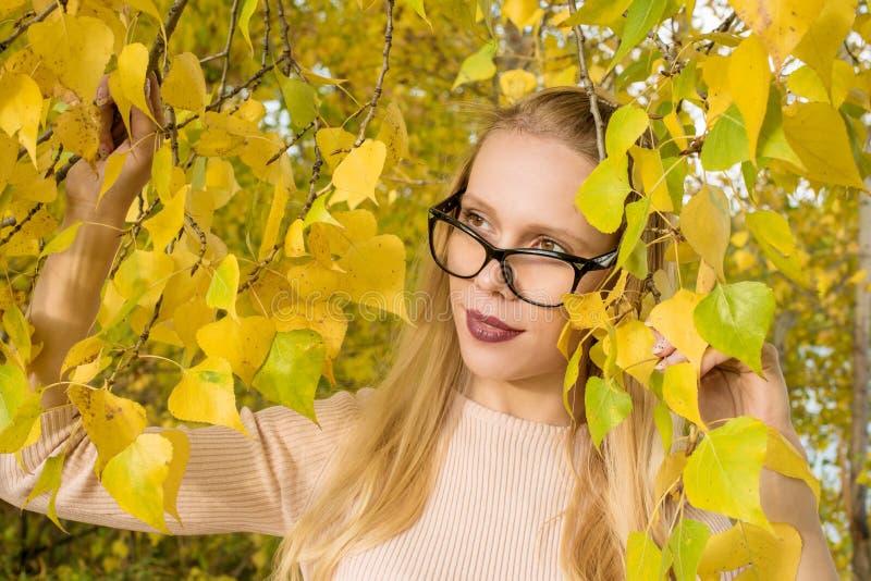 Porträt eines blonden Mädchens mit Gläsern auf einem Hintergrund des gelben Laubs im Herbst stockfoto