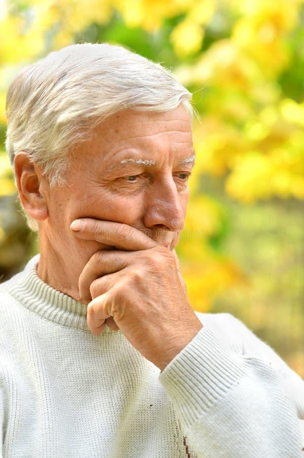 Porträt eines durchdachten älteren Mannes löst lizenzfreie stockfotografie