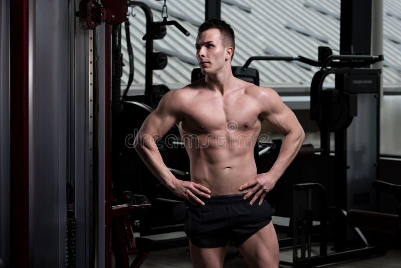 Porträt eines Eignungs-muskulösen Mannes stockbilder