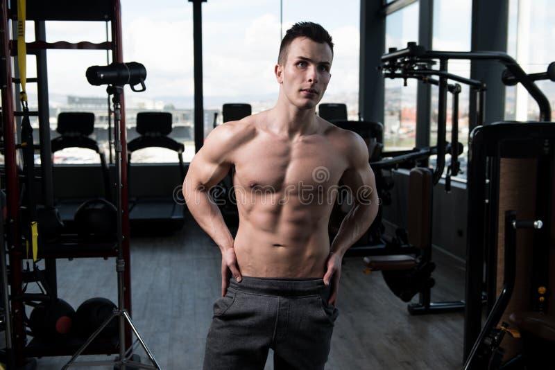 Porträt eines Eignungs-muskulösen Mannes stockfotografie