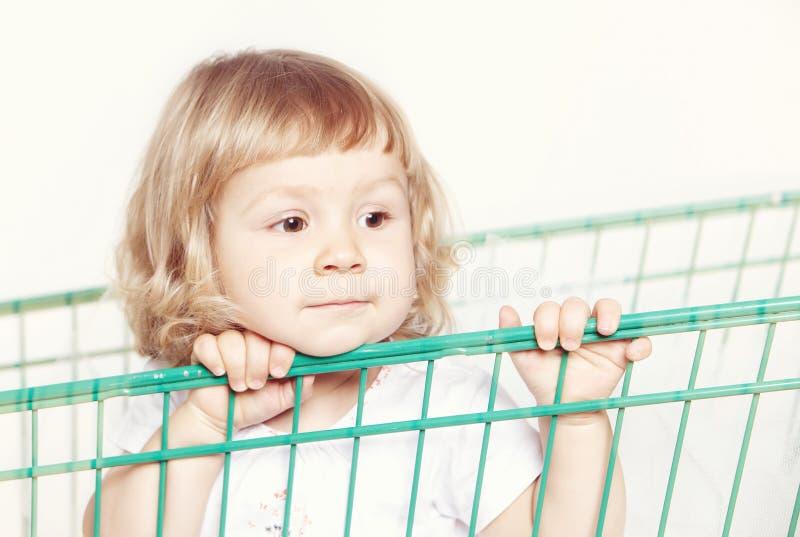 Porträt eines gebohrten netten kleinen Mädchens in einem weißen Kleid, das in einer Laufkatze mit dem Einkaufen auf weißem Hinter lizenzfreie stockfotos