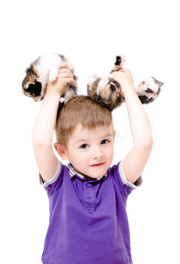 Porträt eines glücklichen Jungen mit Kätzchen in den Händen stockfotografie