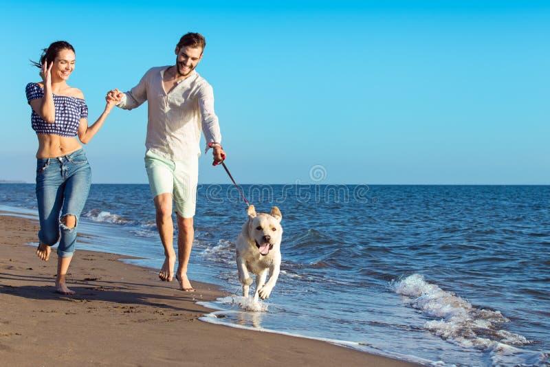 Porträt eines glücklichen Paars mit Hunden am Strand stockfoto