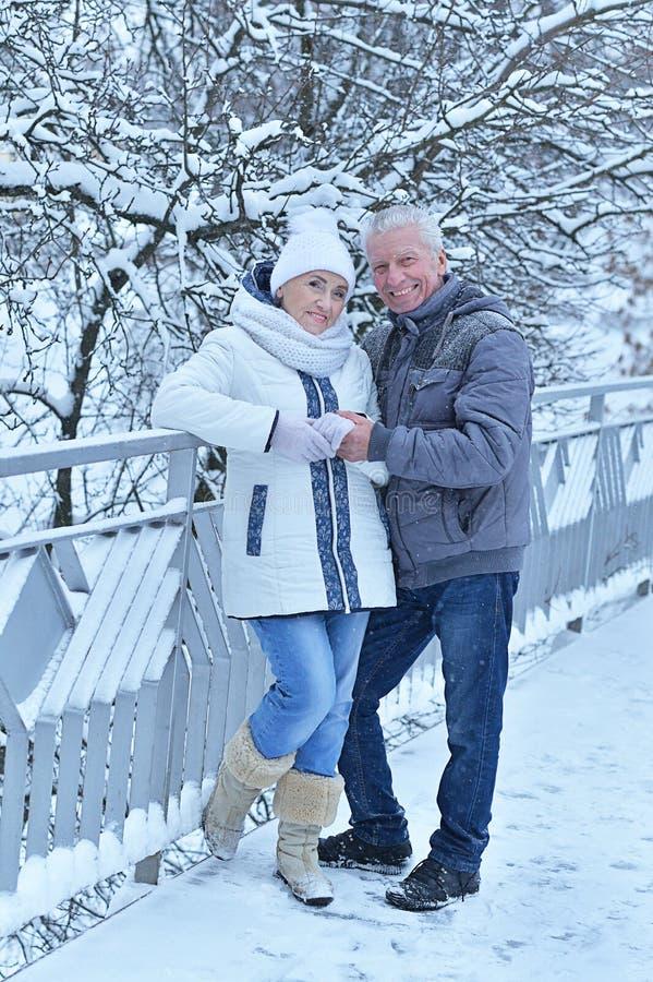 Porträt eines glücklichen Seniorenpaares im Winter im Freien stockfotografie