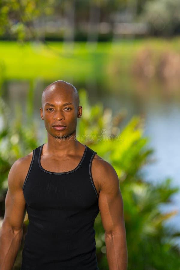 Porträt eines hübschen Afroamerikaner-Modells lizenzfreie stockfotos