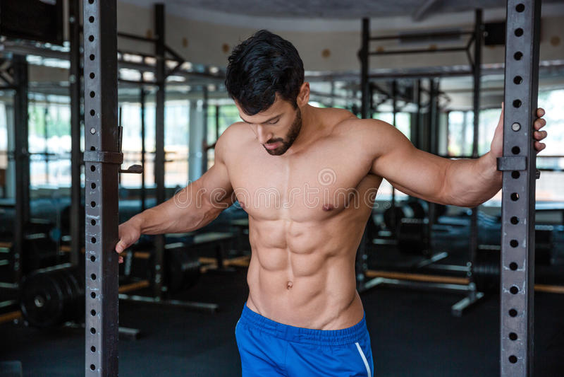 Porträt eines hübschen männlichen Bodybuilders lizenzfreie stockfotos