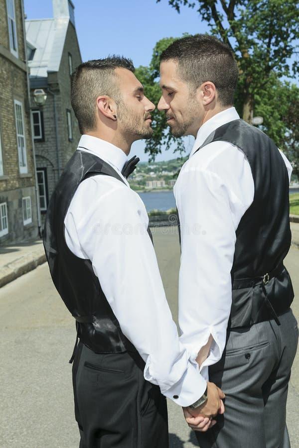 Porträt eines liebevollen homosexuellen männlichen Paares auf ihrem stockbild