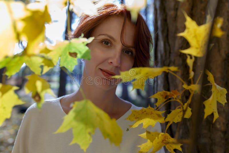Porträt eines Mädchens mit dem braunen Haar nahe einem Baumstamm durch das Herbstlaub lizenzfreie stockfotos