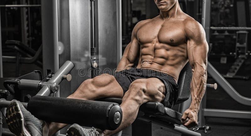 Porträt eines physikalisch jungen Mannes, der Gewichte in der Hand hält lizenzfreie stockfotografie
