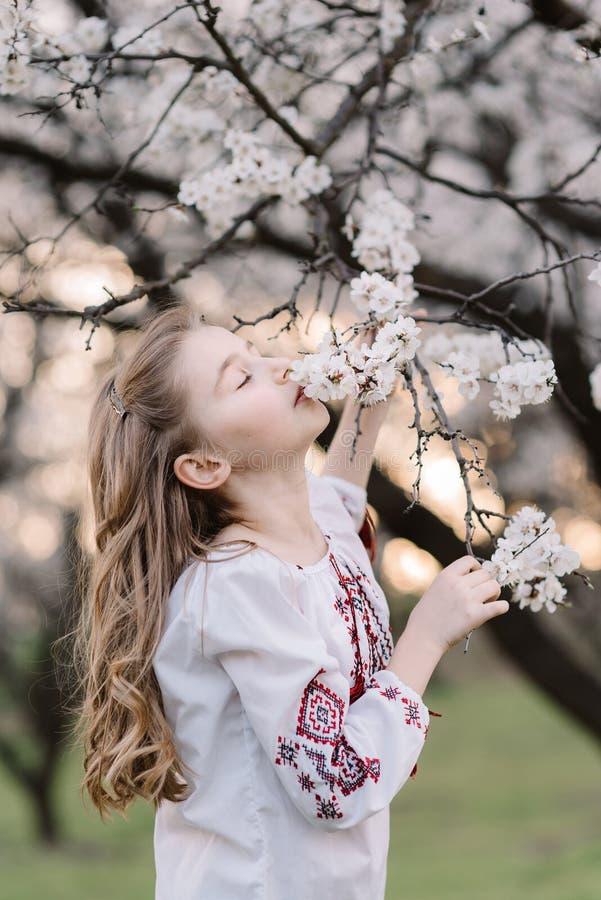 Porträt eines schönen Mädchens mit lockig langen Haaren Schönes Mädchen in der ukrainischen bestickt riecht Aprikosenblütenzweig stockbilder
