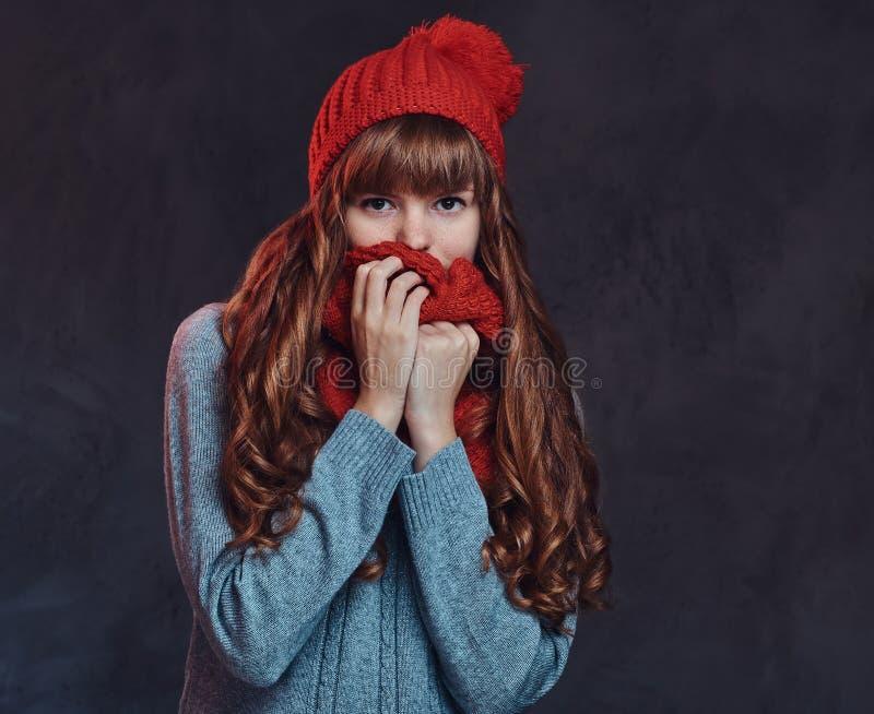 Porträt eines schönen Rothaarigemädchens, das eine warme Strickjacke trägt, bedeckt ihr Gesicht mit einem Schal stockfoto