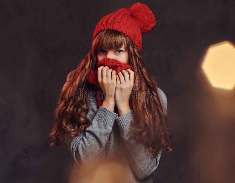 Porträt eines schönen Rothaarigemädchens, das eine warme Strickjacke trägt, bedeckt ihr Gesicht mit einem Schal lizenzfreies stockfoto